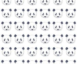 panda, background, and wallpaper image