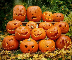 pumpkin, Halloween, and autumn image