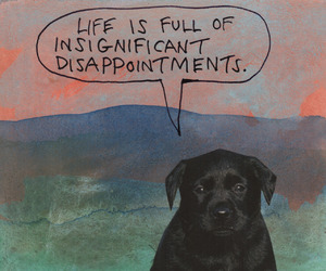 dog and life image