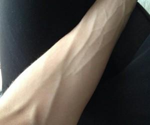 veins image