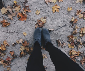 artistic, autumn, and booties image