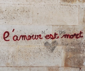 quotes, wall, and amour image