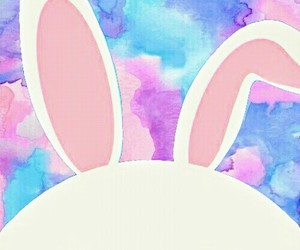 colores, conejo, and fondos de pantalla image
