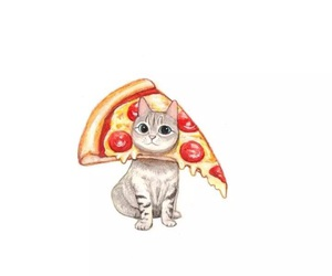 cat, pizza, and wallpaper image