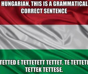 funny, grammar, and hungarian image