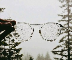 glasses, rain, and forest image