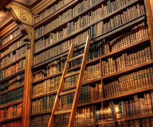 book, library, and ladder image