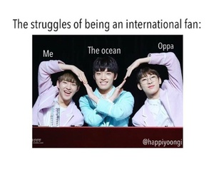 meme, funny, and kpop image