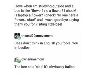 funny, tumblr, and post image
