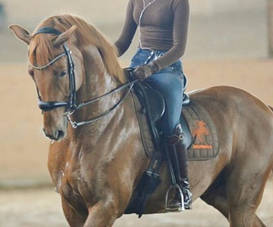 ginger, horse, and music image