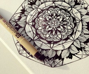 beautiful, flower, and draw image