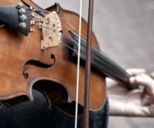 violin, music, and instrument image