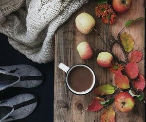 apples, autumn, and cozy image