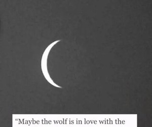 moon, love, and wolf image