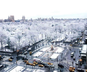 Central Park, new york, and winter image