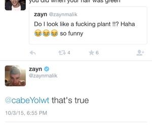 green hair, twitter, and zayn malik image