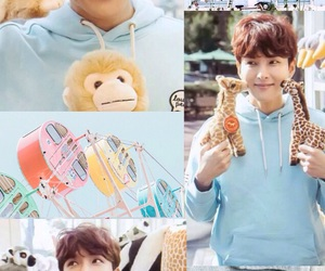 aesthetic, ryeowook, and super junior image