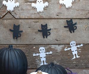 Halloween, bat, and cat image