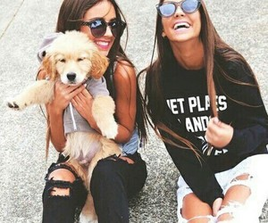 dog, friends, and puppy image