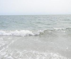 sea, pale, and beach image