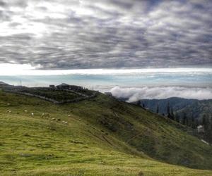 Georgia, nature, and photography image