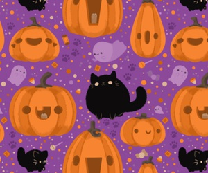 background, cat, and pumpkin image
