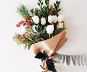blossom, botanic, and inspiration image