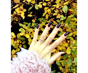 colours, diy, and fall image