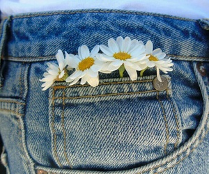 flowers, jeans, and daisy image