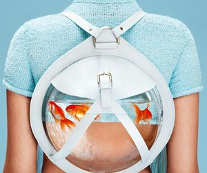 backpack and fish image