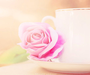 cup, sweet, and rose image