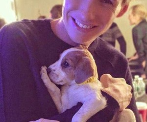 eddie redmayne, puppy, and dog image