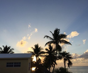 blue, clouds, and palm trees image
