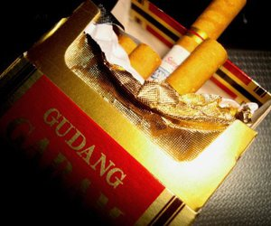 cigarette and gudang image