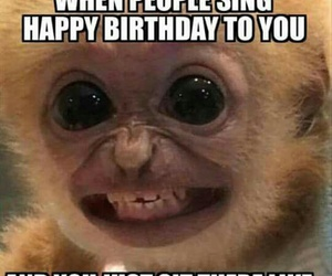 funny, birthday, and meme image