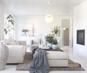chic, home, and interior image