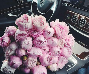 car and flowers image
