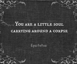 quotes, soul, and corpse image