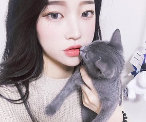 girl, ulzzang, and cat image