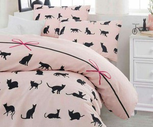 cama, home, and cats image