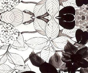 black and white, Blanc, and fleur image