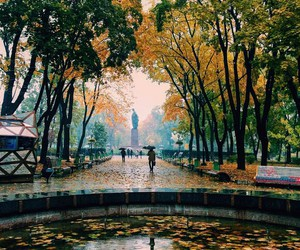 autumn, beauty, and fountain image