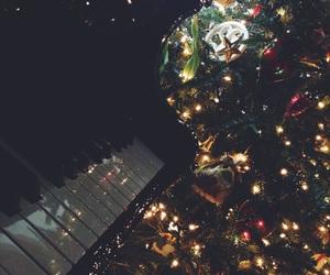 christmas, christmas tree, and cold image