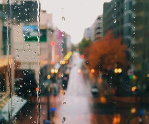 rain, city, and autumn image
