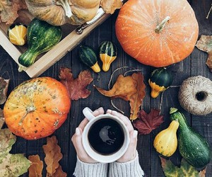 autumn, pumpkin, and coffee image