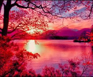 nature, sun, and sunrise image