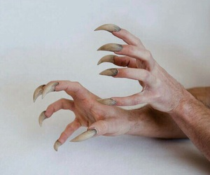 claws, creepy, and hands image