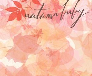 wallpaper, autum, and autumn image