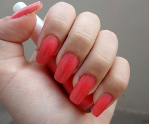 coral, nail, and nails image