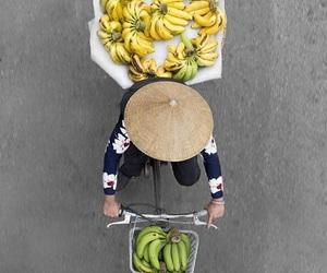 banana and photography image